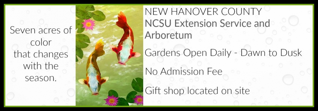 NCSU Extension Service and Arboretum